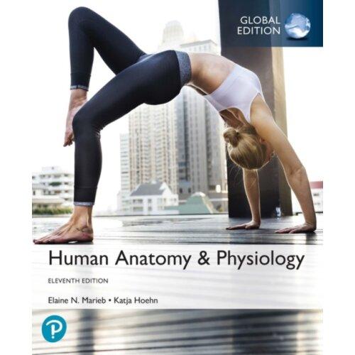 Human Anatomy & Physiology Global Edition by Marieb & ElaineHoehn & Katja