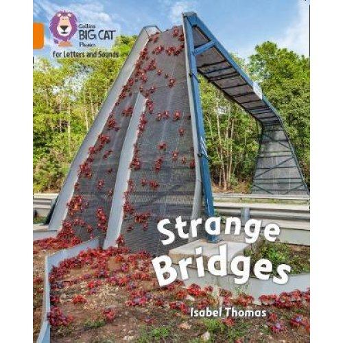 Strange Bridges