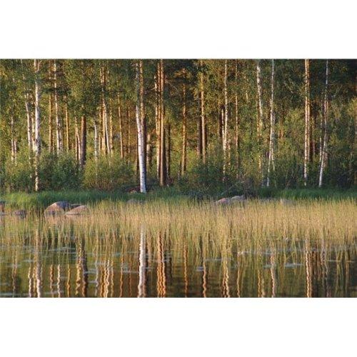 Landscape Poster Print, 17 x 11