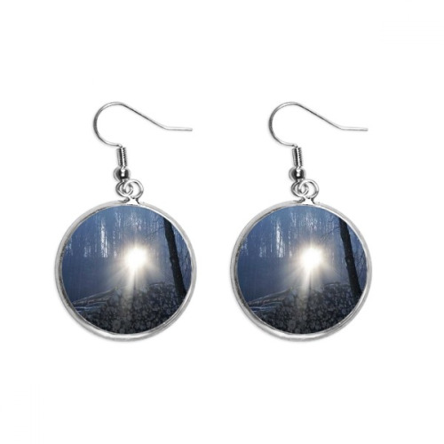 Science Nature Dark Forestry Scenery Ear Dangle Silver Drop Earring Jewelry Woman