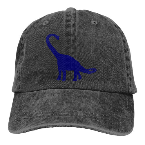 Dinosaur Denim Baseball Caps