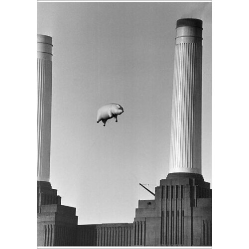 Pink Floyds Inflatable Pig Battersea Power Station (Poster Print)