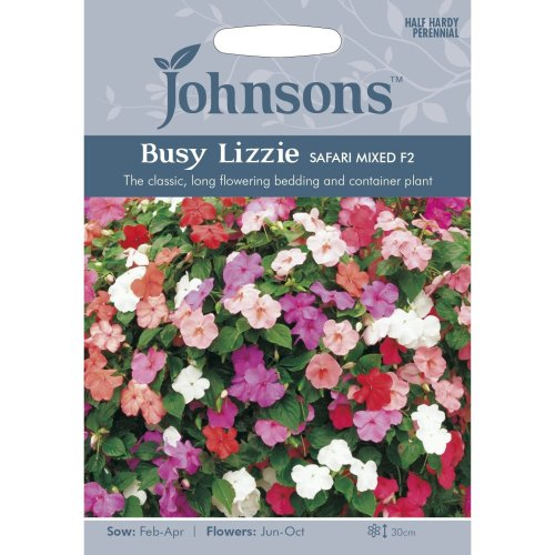 Johnsons Seeds - Pictorial Pack - Flower - Busy Lizzie Safari Mixed F2 - 50 Seeds