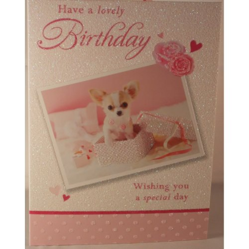 Have a lovely Birthday card Chihuahua puppy photograph 19cm x 13.25cm