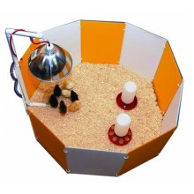 Farm Innovators-Farm Baby Chick Starter Home Orange & White 3700