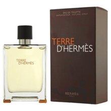 Hermes Terre D'Hermes 100ml Eau De Toilette