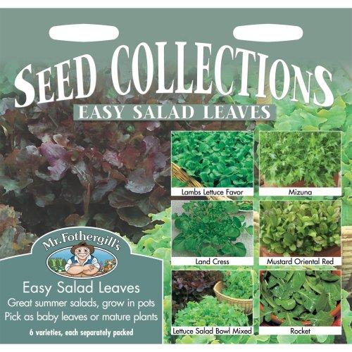 Mr Fothergills - Pictorial Packet - Vegetable - Easy Salad Leaves Collection - 6 Varieties Seeds