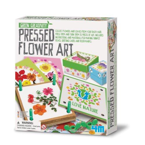 Pressed Flower Art - Green Creativity
