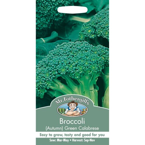 Mr Fothergills - Pictorial Packet - Vegetable - Broccoli  - Autumn Green Calabrese - 250 Seeds
