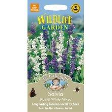 Mr Fothergills - Pictorial Packet - Flower - Salvia Blue & White - 250 Seeds