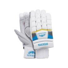Newbery Invictus Cricket Gloves (2020)