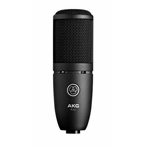 AKG P120 High-Performance General Purpose Recording Condenser Microphone