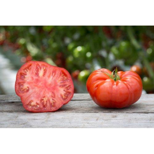 Tomato Beefsteak (30) Vegetable Seeds
