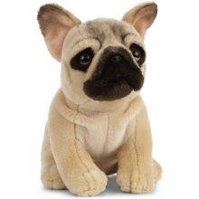 Living Nature AN452 Pets French Bulldog Plush Toy, 20cm Dog