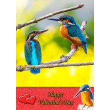 "Kingfisher Valentine's Day Greeting Card 8""x5.5"""