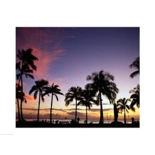 Silhouette of palm trees on the beach  Waikiki Beach  Honolulu  Oahu  Hawaii  USA -24 x 18- Poster Print