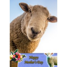 """Sheep Mother's Day Greeting Card 8""""x5.5"""""""