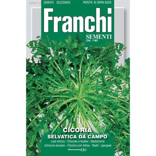 Franchi Seeds of Italy - DBO 40/12 - Wild Cichory - Selvatica Da Campo - Seeds