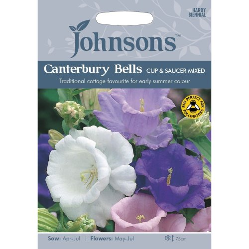 Johnsons Seeds - Pictorial Pack - Flower - Canterbury Bells Cup and Saucer Mixed - 600 Seeds