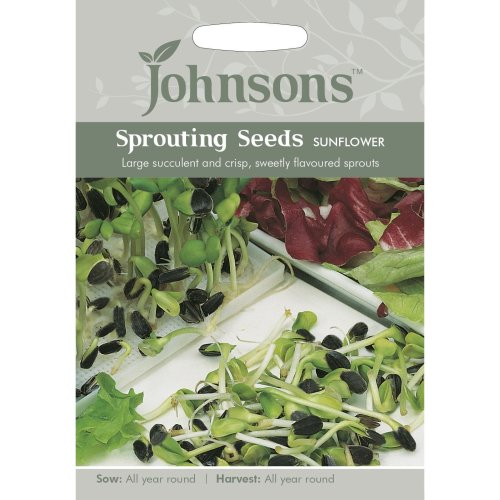 Johnsons Seeds - Pictorial Pack - Vegetable - Sunflower (Sprouting Seeds) - 20g Seeds