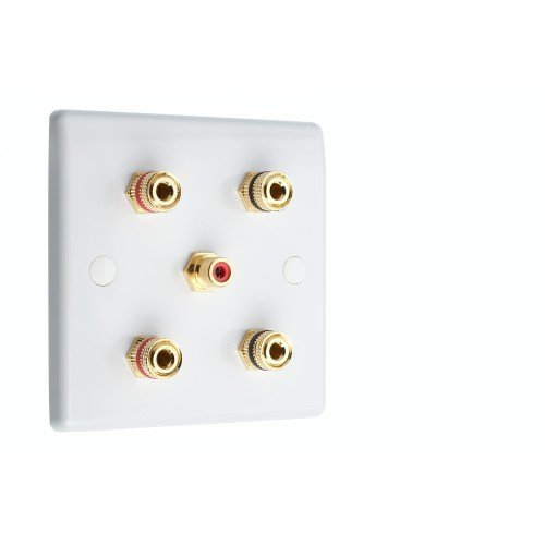 9.1 Surround Sound Speaker Wall Plate with Gold Binding Posts 1 RCA White