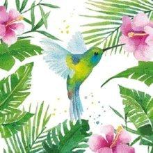 4 x Paper Napkins - Tropical Hummingbird - Ideal for Decoupage / Napkin Art