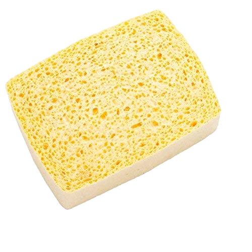 Lincoln Sponge