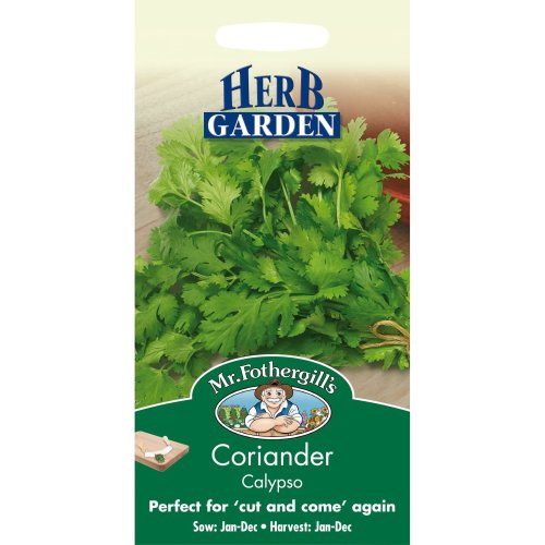 Mr Fothergills - Pictorial Packet - Herb - Coriander Calypso - 150 Seeds