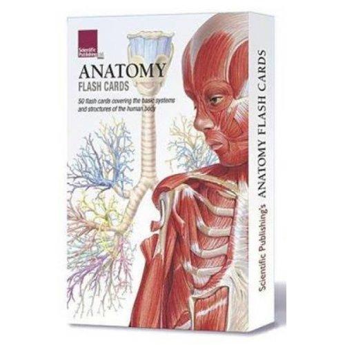 Anatomy Flash Cards by Scientific Publishing
