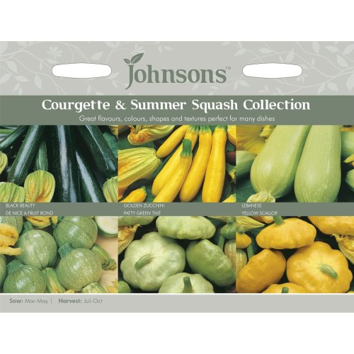 Johnsons Seeds - Pictorial Pack - Vegetable - Courgettes & Summer Squashes Collection