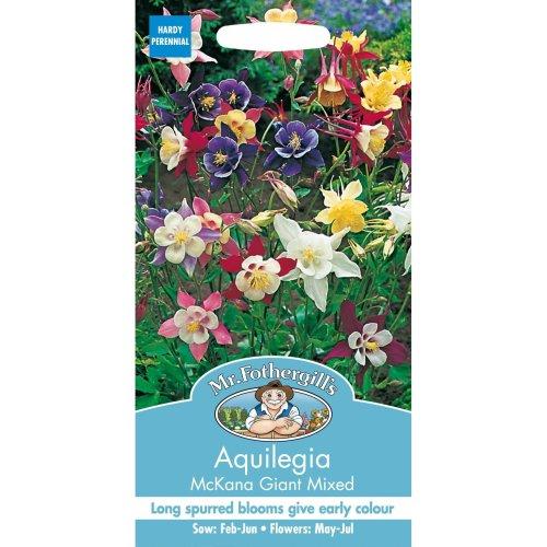 Mr Fothergills - Pictorial Packet - Flower - Aquilegia McKana Giant Mixed - 150 Seeds