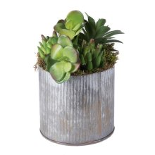 Tin Container Everyday Floral with Succulents