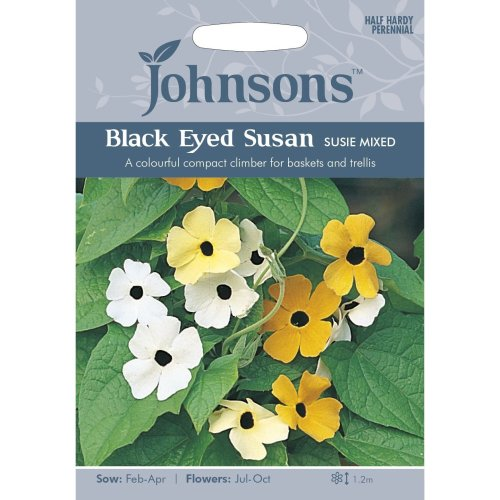 Johnsons Seeds - Pictorial Pack - Flower - Black Eyed Susan Susie Mixed - 25 Seeds