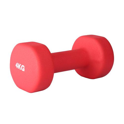 (4kg Pair) RIP X Pair of Dumb Bells Fitness Set - 1-10kg