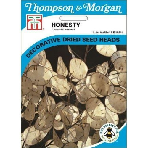 Thompson & Morgan - Flowers - Honesty (Lunaria Or Silver Dollar) - 50 Seed