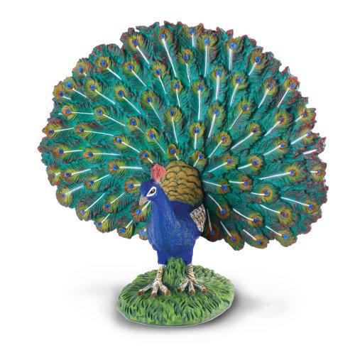 CollectA Peacock