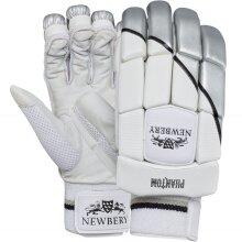 Newbery Phantom Cricket Gloves (2020)