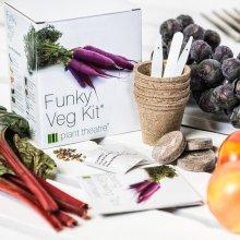 Funky Veg Kit By Plant Theatre