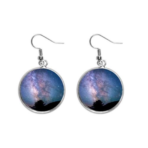 Ocean Jellyfish Science Nature Picture Ear Dangle Silver Drop Earring Jewelry Woman