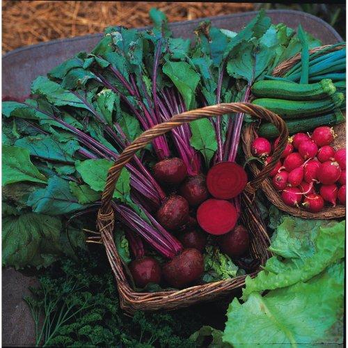 Vegetable - Beetroot - Boltardy - 200 Seeds