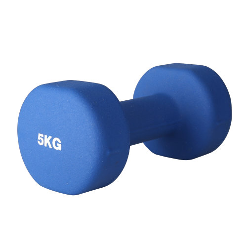 (5kg Pair) RIP X Pair of Dumb Bells Fitness Set - 1-10kg