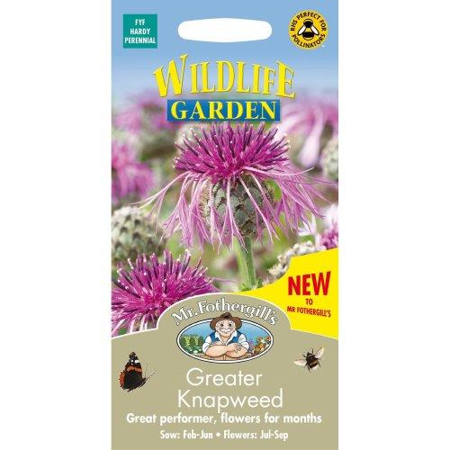 Mr Fothergills - Pictorial Packet - Wildflower - Greater Knapweed - 100 Seeds