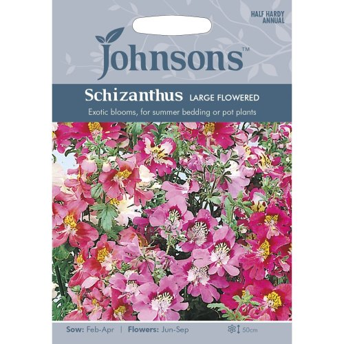 Johnsons Seeds - Pictorial Pack - Flower - Schizanthus Large Flowered Mixed - 250 Seeds