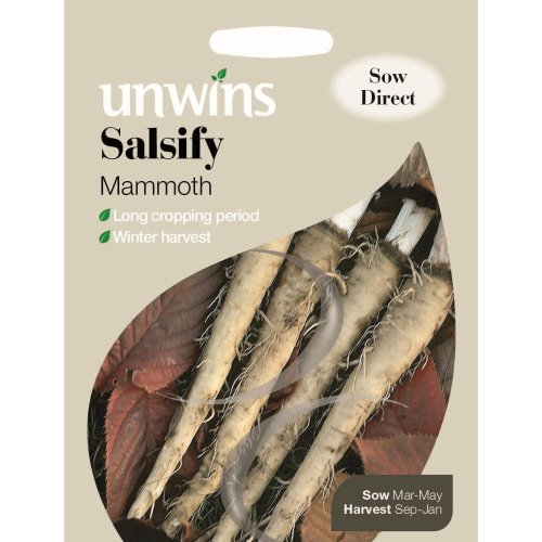 Unwins Pictorial Packet - Salsify Mammoth - 120 Seeds