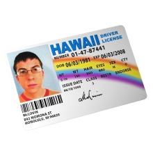 McLovin Driving License SUPERBAD (Film TV Prop)