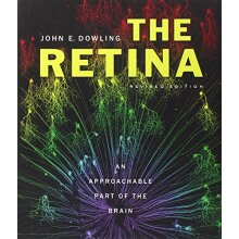 The Retina: An Approachable Part of the Brain - Used