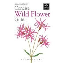 Concise Wild Flower Guide - Used