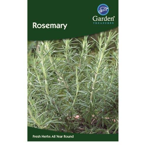 Rosemary Seeds Herbs Garden Treasure 45 seeds