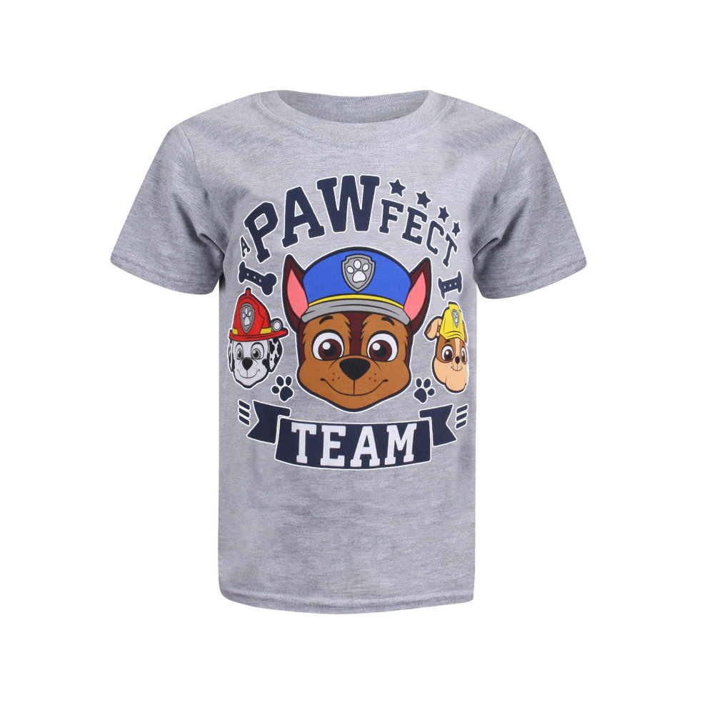 Paw Patrol a Pawfect Team Long Sleeve T Shirt