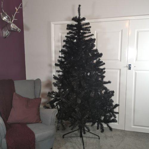 Snowtime 7ft  Black Colorado Pine Christmas Tree With 874 Tips
